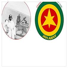 Brown Condor & Lion of Judah on Ethiopian Aircraft Poster