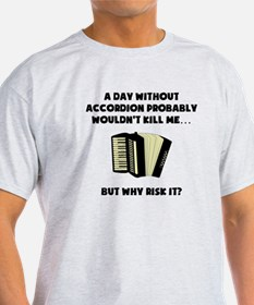 A Day Without Accordion T-Shirt
