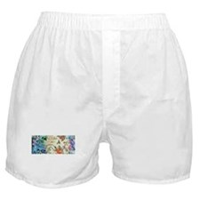 HUMMINGBIRD_STAINED_GLASS Boxer Shorts