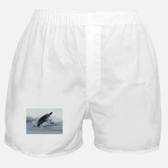 Diving Emperor Penguin Boxer Shorts