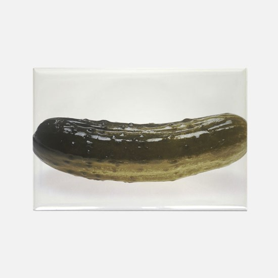 Dill Pickle Magnets