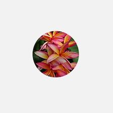 Hawaiian Plumeria Mini Button