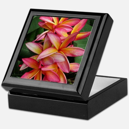 Hawaiian Plumeria Keepsake Box