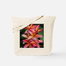 Hawaiian Plumeria Tote Bag