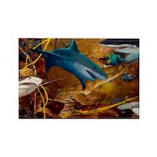 Sharks Rectangle Magnet
