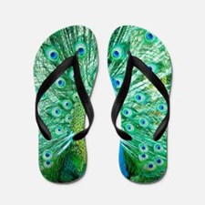 Beautiful Peacock Flip Flops