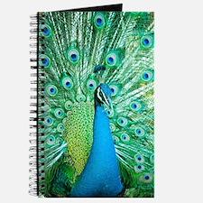 Beautiful Peacock Journal