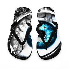Eye Flip Flops