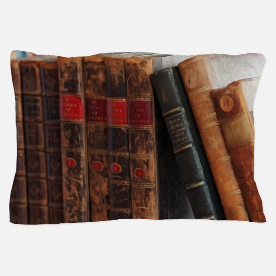 Old Books Pillow Case