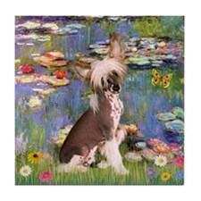 Monet's Lilies & Chinese Crested Tile Coaster