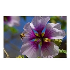 Unique Bee colorful Postcards (Package of 8)