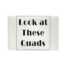 Quads Magnets