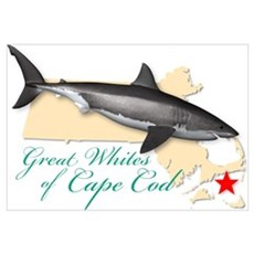 Great Whites of Cape Cod Canvas Art