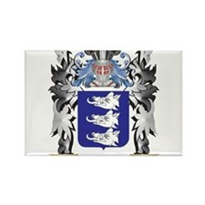 Healey Coat of Arms - Family Crest Magnets