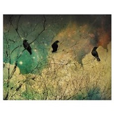 Crows And Clouds Poster