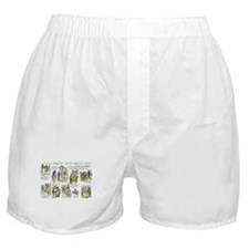 Scenes from Pride and Prejudice Boxer Shorts