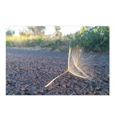 Morning Dandelion Seeds Postcards (Package of 8)