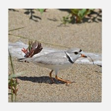 Piping plover Tile Coaster