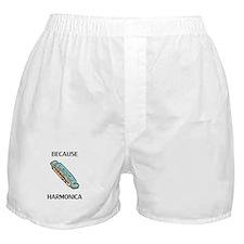 Because Harmonica Boxer Shorts