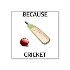 Because Cricket Sticker