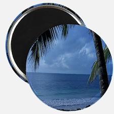 Palm Tree Beach Magnet