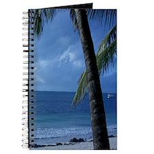 Palm Tree Beach Journal