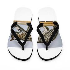 bengal on rail Flip Flops