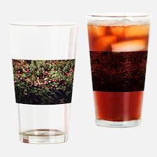 Cranberry Bog Drinking Glass