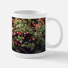 Cranberry Bog Mugs