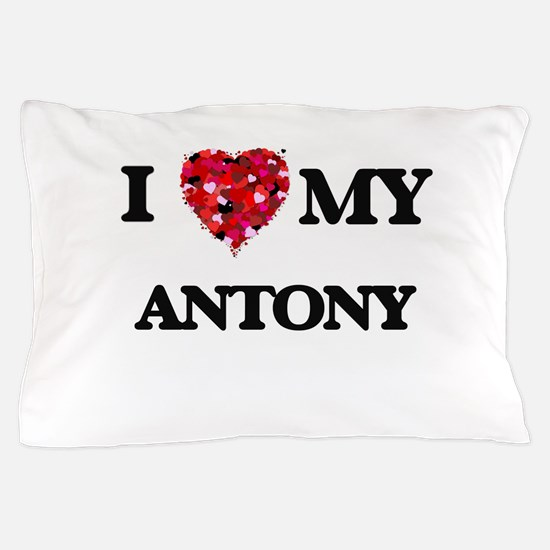 I love my Antony Pillow Case
