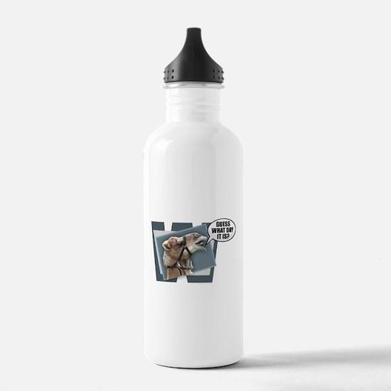 Cute Hump day Water Bottle