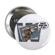"""Cute Hump day 2.25"""" Button (100 pack)"""