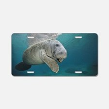 Cute Manatee Aluminum License Plate