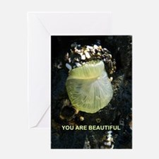 You Are Beautiful Greeting Cards