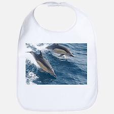 Common Dolphin Bib