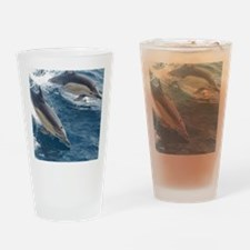 Common Dolphin Drinking Glass