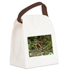 Dinosaur Spinosaurus Canvas Lunch Bag