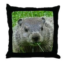 Woodchuck eating Throw Pillow