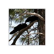 Crows in Love Sticker