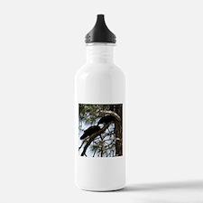 Crows in Love Water Bottle