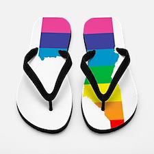 idaho rainbow Flip Flops
