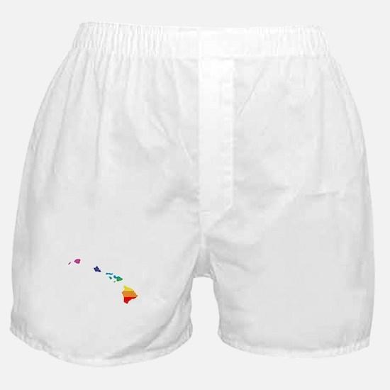 hawaii rainbow Boxer Shorts