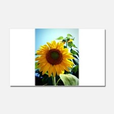 Smiling in the Sun Car Magnet 20 x 12