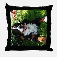 Bernese Mountain Dog in garden Throw Pillow