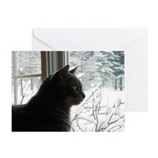 Willy the cat Greeting Card