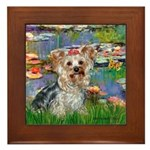 LILIES / Yorkie (T) Framed Tile