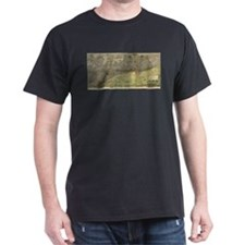 Vintage Map of Chicago (1892) T-Shirt