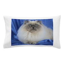 Cute Funny Himalayan Cat Pillow Case