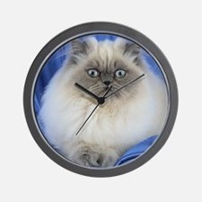 Cute Funny Himalayan Cat Wall Clock