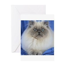 Cute Funny Himalayan Cat Greeting Cards